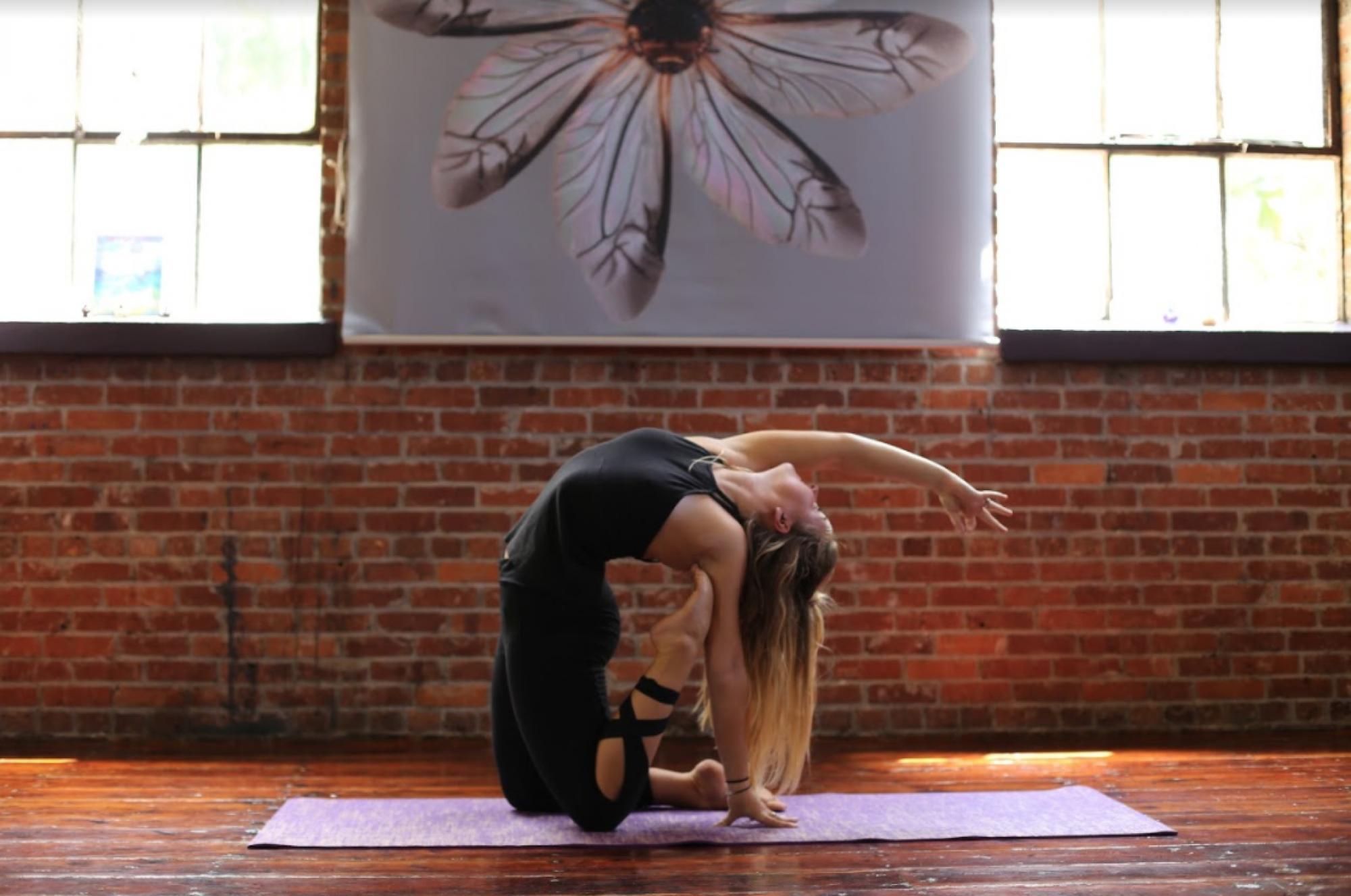Gainesville Yoga Teacher Training